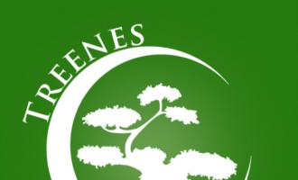 Treenes - Identyfikacja wizualna